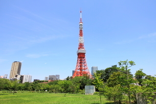 東京タワーの写真素材 [FYI01661983]