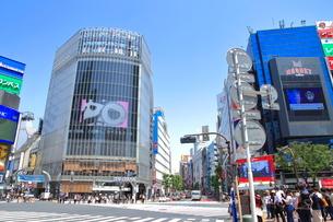 渋谷駅前スクランブル交差点の写真素材 [FYI01662383]