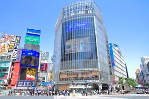 渋谷駅前スクランブル交差点の写真素材 [FYI01662620]