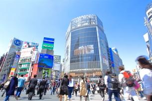 渋谷駅スクランブル交差点の写真素材 [FYI01662823]