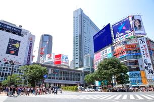 渋谷駅前スクランブル交差点の写真素材 [FYI01662934]