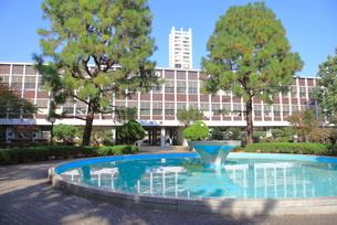 武蔵野大学武蔵野キャンパスの写真素材 [FYI01662994]