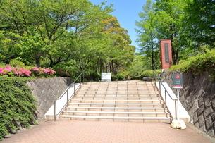 東京薬科大学の写真素材 [FYI01663096]