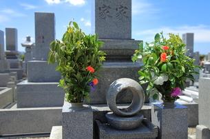 墓参りの写真素材 [FYI01663445]