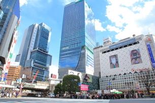 渋谷駅前スクランブル交差点の写真素材 [FYI01663592]