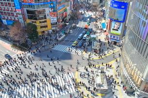 渋谷駅前スクランブル交差点の写真素材 [FYI01663776]