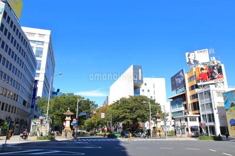 表参道交差点の写真素材 [FYI01663807]