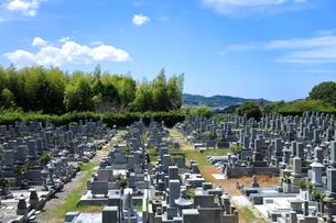 墓場の写真素材 [FYI01663883]