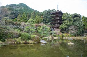 冬の瑠璃光寺、国宝五重塔の写真素材 [FYI01664083]