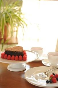 チョコレートケーキとベリー類の写真素材 [FYI01664177]