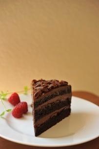チョコレートケーキの写真素材 [FYI01664252]