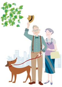 犬の散歩をするおしゃれな老夫婦のイラスト素材 [FYI01664350]