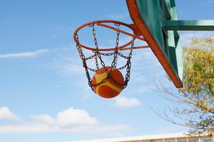 バスケットゴールの写真素材 [FYI01664445]