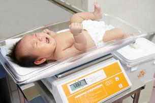 赤ちゃん検診の写真素材 [FYI01664650]