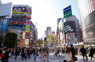 渋谷駅周辺 の写真素材 [FYI01664808]