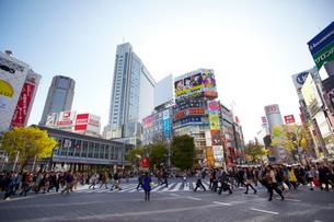 渋谷駅周辺 の写真素材 [FYI01664860]