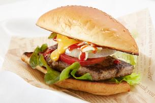 ハンバーガーの写真素材 [FYI01664901]