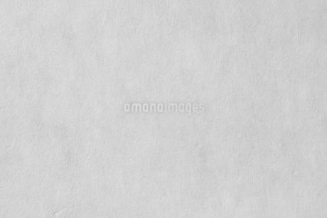 和紙の写真素材 [FYI01665104]