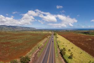 ハワイの風景 ノースショア・ハレイワに続く道の写真素材 [FYI01665143]