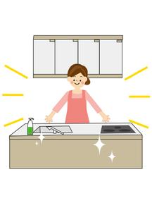 家事 キッチンのイラスト素材 [FYI01665446]