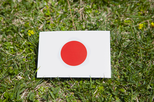 芝生の上に置いた日本国旗の写真素材 [FYI01665779]