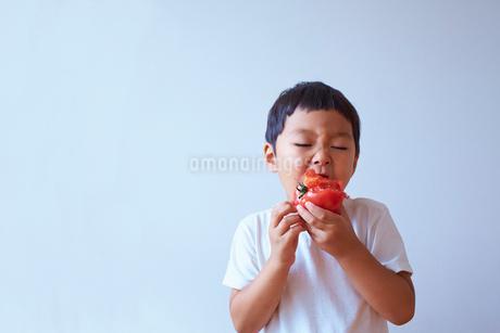トマトをかぶりついて食べる子供の写真素材 [FYI01665906]