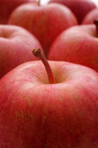 りんごの写真素材 [FYI01666047]