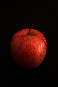 りんごの写真素材 [FYI01666066]