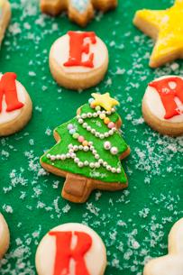 クリスマスツリーのアイシングクッキーの写真素材 [FYI01666134]