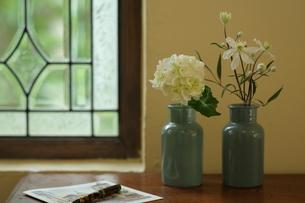 梅雨 白い花の写真素材 [FYI01666310]