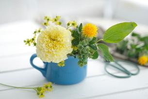 黄色い花のアレンジの写真素材 [FYI01666323]