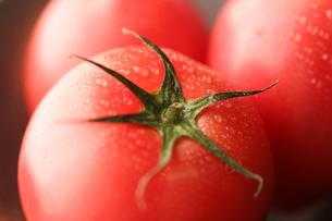 冷やしトマトの写真素材 [FYI01666617]