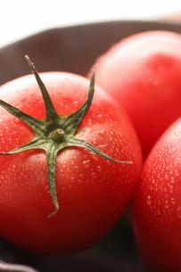 冷やしトマトの写真素材 [FYI01666630]