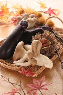 秋の味覚の写真素材 [FYI01666722]