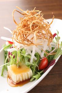 豆腐と大根のサラダの写真素材 [FYI01667038]