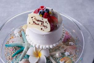 バースデーケーキの写真素材 [FYI01667076]