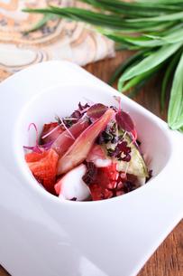 蛸と紫野菜のセビーチェの写真素材 [FYI01667110]