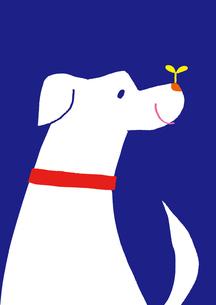 犬のイラスト素材 [FYI01667470]