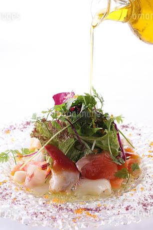 魚介のカルパッチョとサラダ添えの写真素材 [FYI01667531]