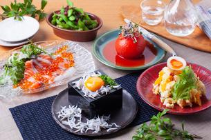 冷菜集合イメージの写真素材 [FYI01667587]