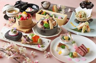 極み懐石料理の写真素材 [FYI01667615]