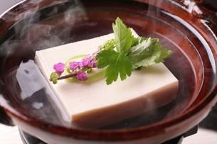 湯豆腐の写真素材 [FYI01667684]