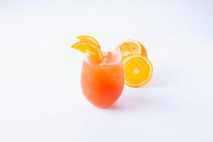 オレンジカクテルの写真素材 [FYI01667935]