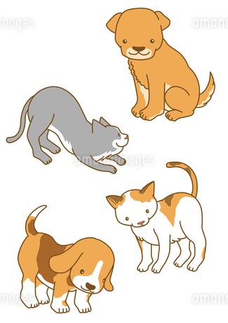 犬と猫のイラスト素材 [FYI01668075]