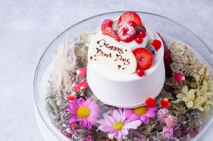 バースデーケーキの写真素材 [FYI01668158]