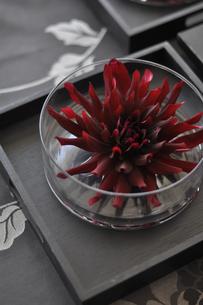 グラスに入った赤い花の写真素材 [FYI01668612]