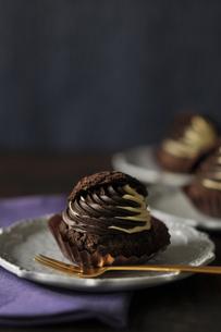 チョコレートのシュークリームの写真素材 [FYI01668630]