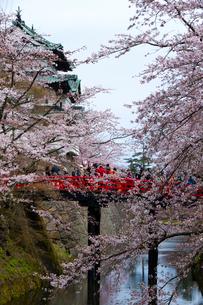 弘前城と桜の写真素材 [FYI01669055]