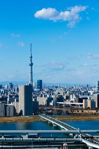 東京スカイツリーとビル群縦位置の写真素材 [FYI01669080]