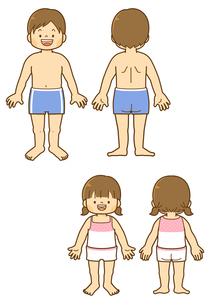 男子の体と女子の体の前と後ろのイラスト素材 [FYI01669305]